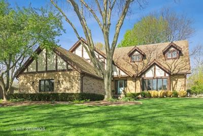 Hawthorn Woods Single Family Home For Sale: 7 Elm Street