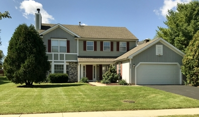 West Dundee Single Family Home For Sale: 680 Malcolm Lane