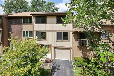 Roselle Condo/Townhouse For Sale: 614 East Woodfield Trail