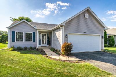 Aurora Single Family Home For Sale: 2441 Fox Drive