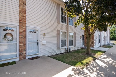 Hoffman Estates Condo/Townhouse For Sale: 1951 Kenilworth Circle #1951