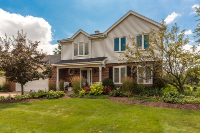 Downers Grove Single Family Home Contingent: 10s316 Havens Drive