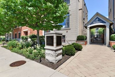Glen Ellyn Condo/Townhouse For Sale: 460 Pennsylvania Avenue #2