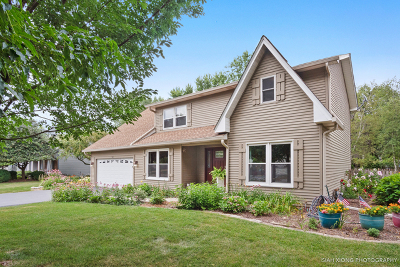 Batavia Single Family Home For Sale: 540 Iroquois Drive