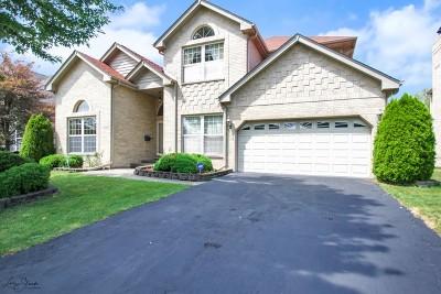 Morton Grove Single Family Home New: 9246 Nagle Avenue