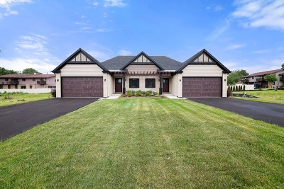 Lockport Condo/Townhouse For Sale: 552 Mihelich Lane