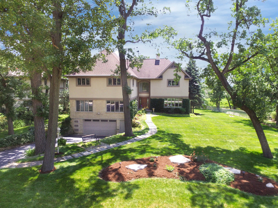 Oak Brook Single Family Home For Sale: 9 Woodridge Drive