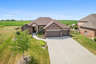 Homer Glen Single Family Home For Sale: 15664 Jeanne Lane