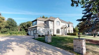 Libertyville Single Family Home For Sale: 1551 Daybreak Drive