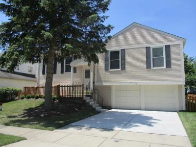 Vernon Hills Single Family Home For Sale: 12 Montebello Drive