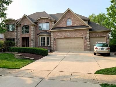 Batavia Single Family Home For Sale: 2493 Bird Lane