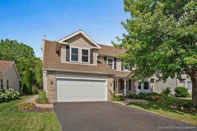 Aurora Single Family Home New: 271 Meadowview Lane