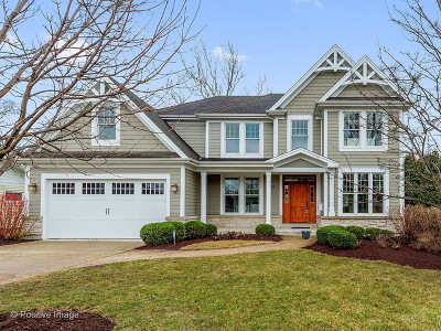 Wheaton Single Family Home For Sale: 918 Parkway Drive