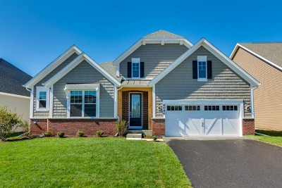 Naperville Single Family Home For Sale: 4040 Lobo Lane