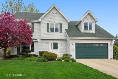 Lake Zurich Single Family Home For Sale: 3 Fern Court