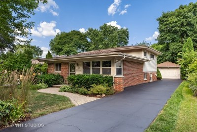 Libertyville Single Family Home For Sale: 210 Kenloch Avenue