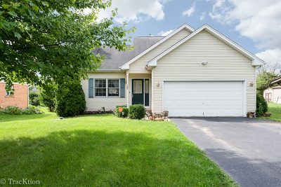 Carpentersville Single Family Home New: 157 Birchwood Road