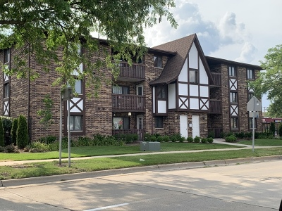 Chicago Ridge Condo/Townhouse For Sale: 10620 South Ridgeland Avenue #3A