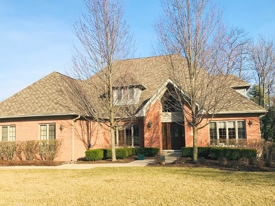 Orland Park Single Family Home For Sale: 10511 Misty Hill Road