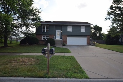 Frankfort Single Family Home For Sale: 19805 South Glasgow Drive