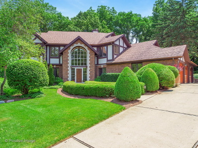 Glen Ellyn Single Family Home For Sale: 873 Baker Court