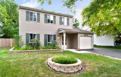 Warrenville Single Family Home For Sale: 30w121 Branch Avenue