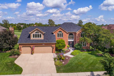 Naperville Single Family Home For Sale: 1572 White Eagle Drive