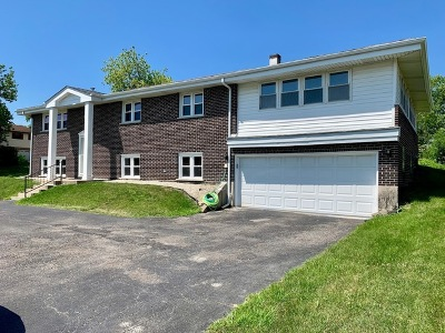 Hickory Hills Single Family Home For Sale: 8020 West 91st Street