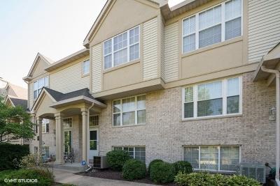Darien Condo/Townhouse For Sale: 2795 Woodmere Drive