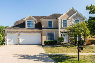 South Elgin Single Family Home For Sale: 741 Cole Drive