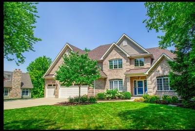 Wheaton Single Family Home For Sale: 2225 Warrenville Avenue