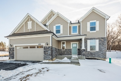 Crystal Lake Single Family Home For Sale: 1051 Sugar Maple Drive