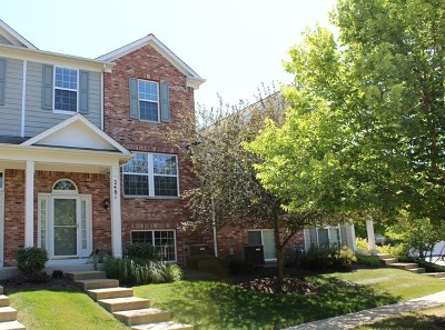 Elgin Condo/Townhouse For Sale: 2481 Anna Way