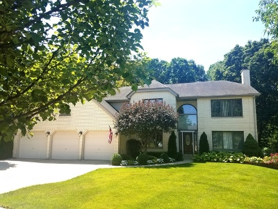 Roselle Single Family Home For Sale: 712 Catino Court