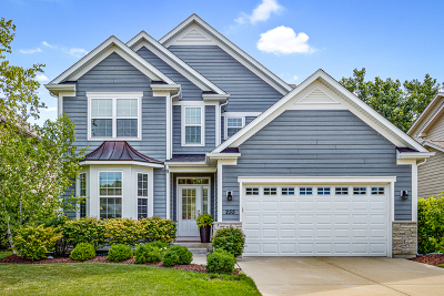Buffalo Grove Single Family Home For Sale: 255 Kendall Court