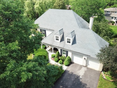 Palatine Single Family Home For Sale: 144 South Whitehall Court