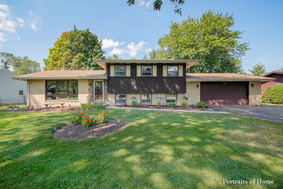 Schaumburg Single Family Home Re-Activated: 320 East Niagara Avenue