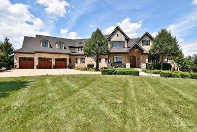 De Kalb, Dekalb, Maple Park, Sycamore, Elburn, Geneva, Gilberts, Hampshire, St. Charles Single Family Home For Sale: 43w068 Derek Drive