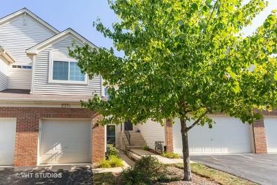 South Elgin Condo/Townhouse For Sale: 237 Nicole Drive #D