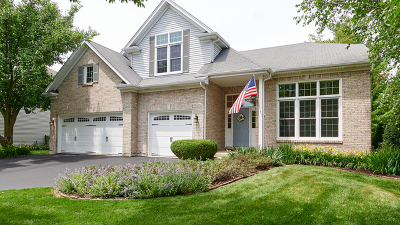 Naperville Single Family Home For Sale: 1607 Alan Court
