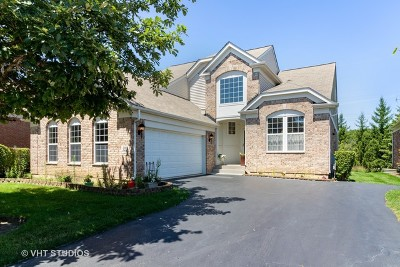 Orland Park Single Family Home For Sale: 9252 Dunmore Drive