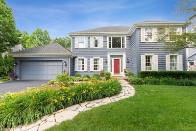 Arlington Heights Single Family Home For Sale: 2162 North Charter Point Drive