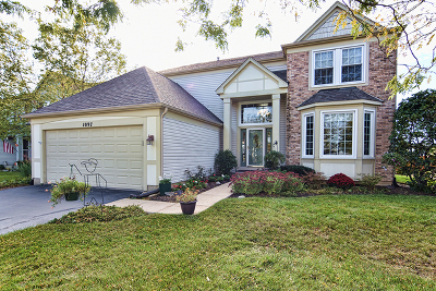 Elgin Single Family Home For Sale: 1097 Annandale Drive