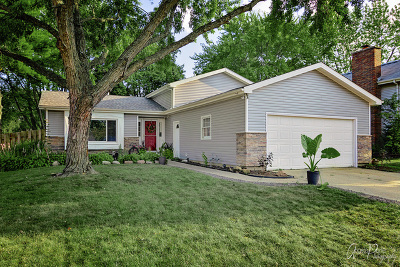 McHenry Single Family Home For Sale: 3701 West Bradley Court West