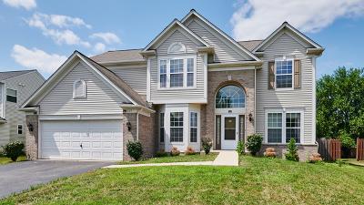 Bolingbrook Single Family Home For Sale: 317 Dogwood Street