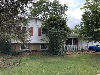 Oak Forest Single Family Home For Sale: 5185 Elmwood Road