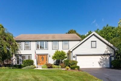 Wauconda Single Family Home For Sale: 800 Horseshoe Circle