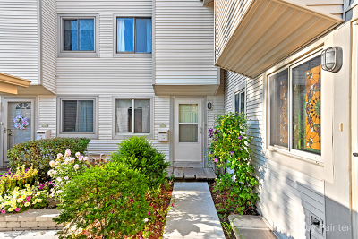 Schaumburg Condo/Townhouse For Sale: 1024 Casa Drive #1