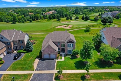 Hawthorn Woods Single Family Home For Sale: 24 Tournament Drive South