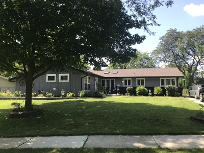Schaumburg Single Family Home For Sale: 1702 Winchester Lane
